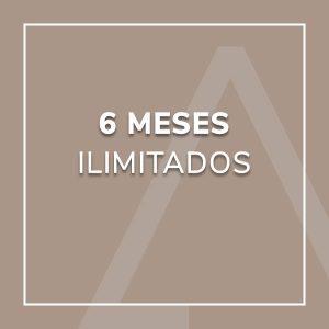 6 Meses Ilimitados